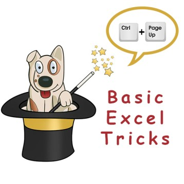 Basic Excel Tricks