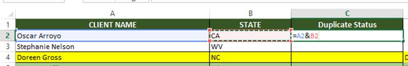 ExcelSirJi - Find Duplicate in Excel